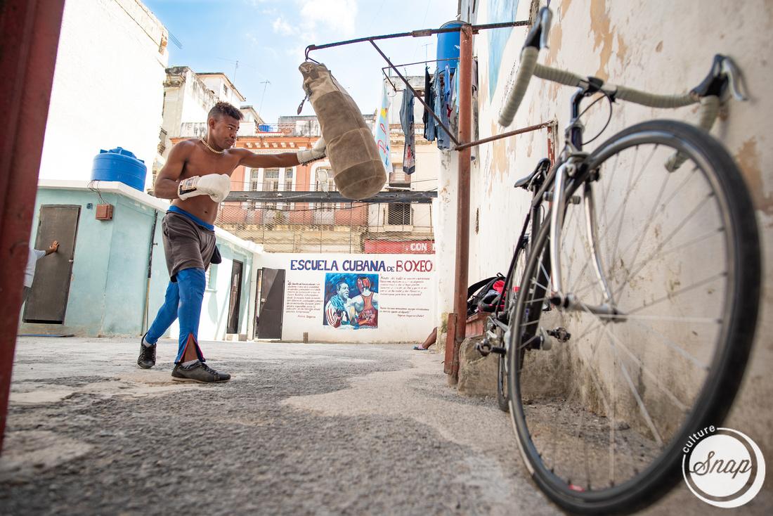 Cuban School of Boxing